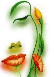 femme-fleur-211x300