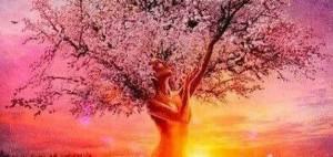 femme arbre rose