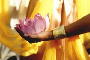 femme lotus rose